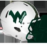 Wellsboro Hornets