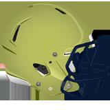 Franklin Regional Panthers