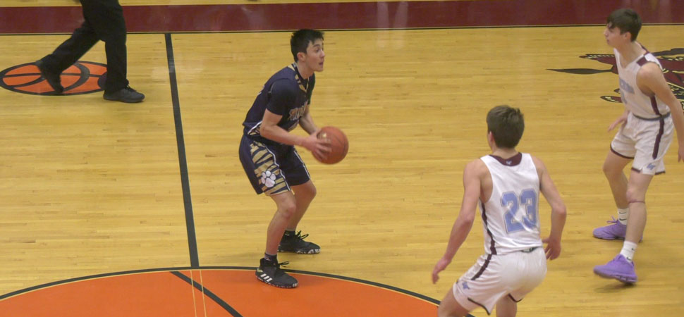 Tigers fall to Loyalsock in D4 AAA semis