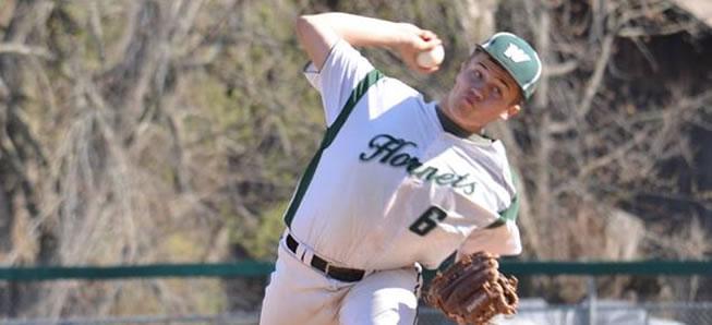 Hornet baseball tops Troy, 8-3