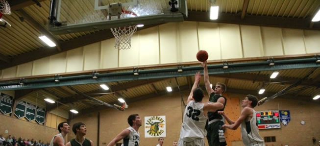 Hornets eliminated from District Basketball Playoffs