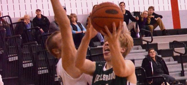 Wildcat basketball stings Hornets