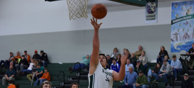 Hornets hang on against Liberty