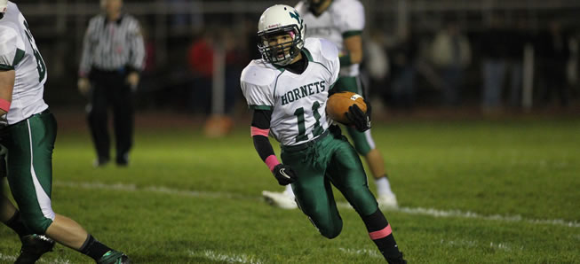 Brooks, Owlett, Doty headline Wellsboro's District IV football All-Stars