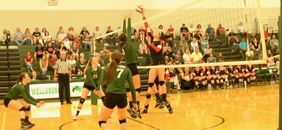 Lady Hornets sweep North Penn-Liberty