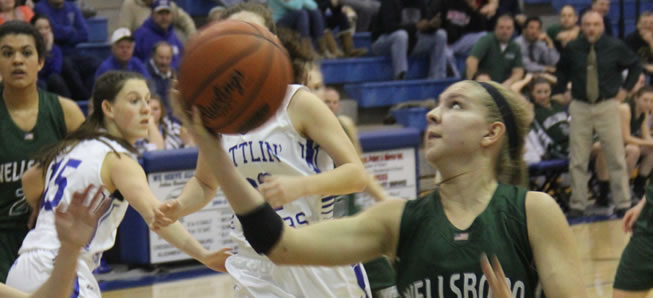 Lady Hornets fall to Minersville in states
