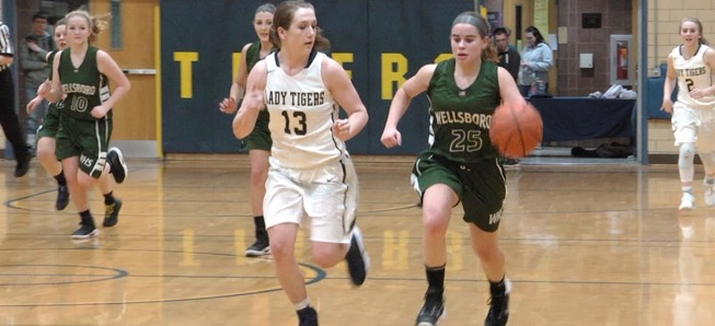 Lady Hornets top North Penn-Mansfield, 54-29