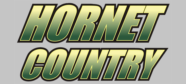 Lady Hornets roll to third straight win