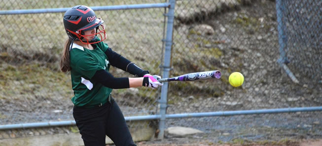 Lady Hornets top Wyalusing, 6-3