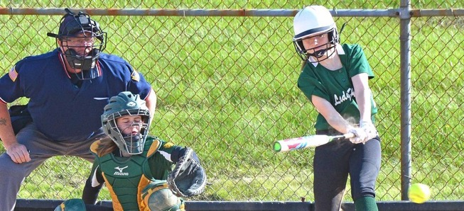 Lady Hornets knock off Loyalsock in extra innings.