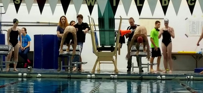 Hornet swimmers compete against Athens, Towanda.