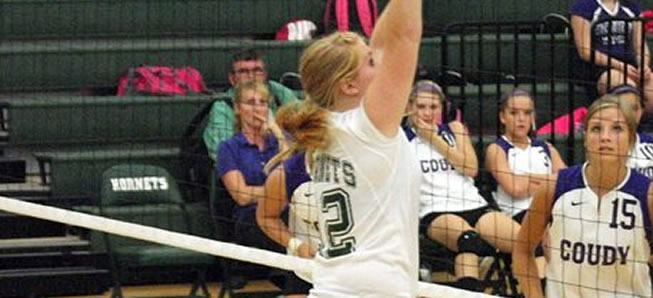 Volleyball tops Southside