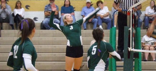 Volleyball team handles Liberty