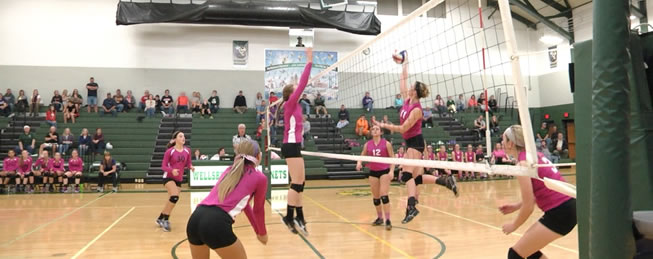 Lady Hornets top Coudersport, 3-1 in Pink Game