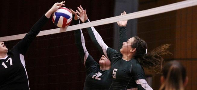 Hornet Volleyball tops Liberty, 3-1