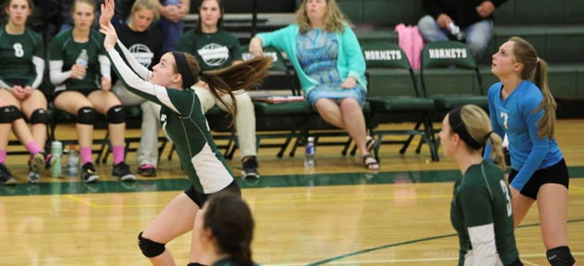 Hornet Volleyball edges Liberty, 3-2