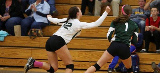Hornet Volleyball edges Wyalusing, 3-2