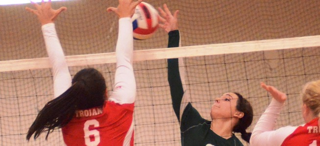 Lady Hornets drop fourth straight