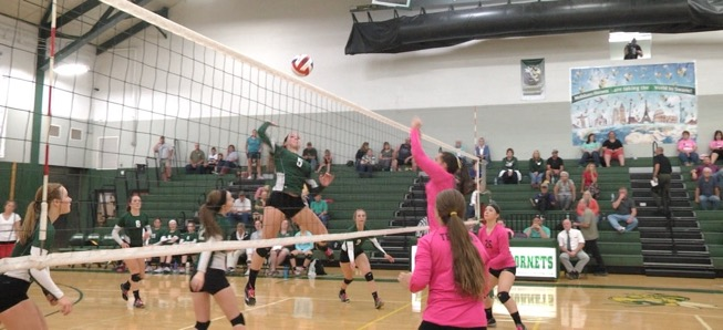 Lady Hornets fall Troy in 5 sets