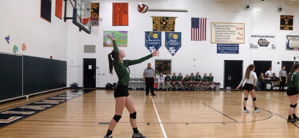 Lady Hornets fall to North Penn-Liberty in District 4 volleyball championship