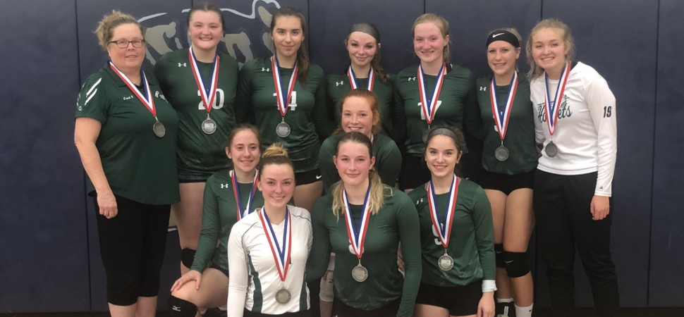 Lady Hornets fall to Liberty in D4 championship game