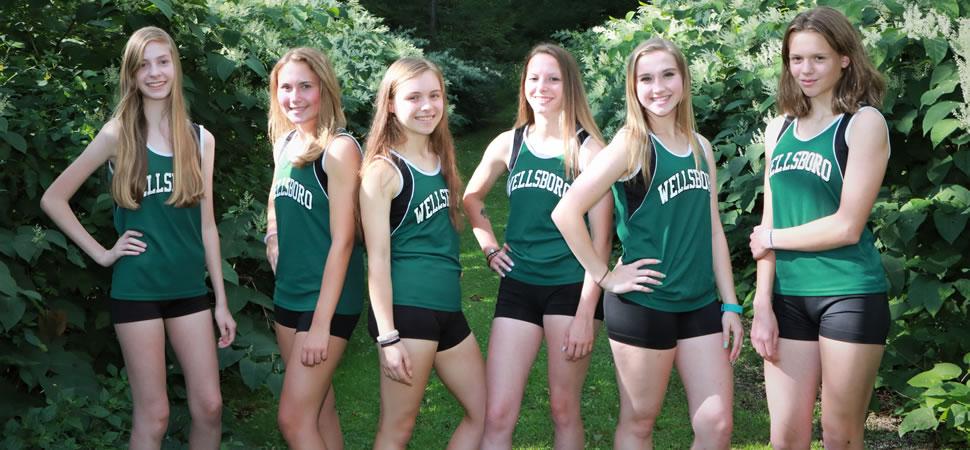 Wellsboro Girls Cross Country
