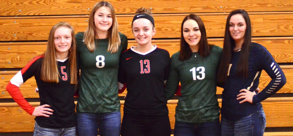 D4 AA Volleyball All-Stars announced